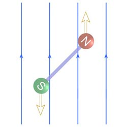 Uniform field does NOT exert translational force on dipole.